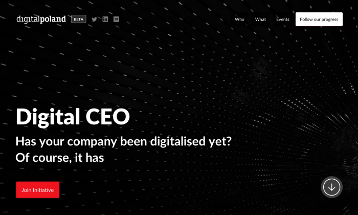 DigitalPoland digital CEO initiative cover